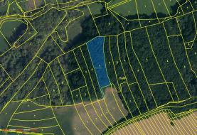 Prodej, les, 5251 m2, Kelníky