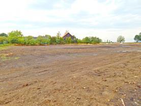 pohled na pozemek  (Prodej, stavební pozemek, 2306 m2, Smilovice - Újezdec), foto 3/10