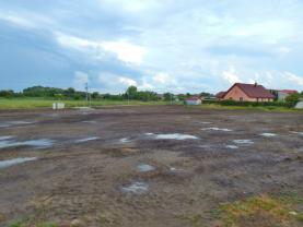 pohled na pozemek  (Prodej, stavební pozemek, 2306 m2, Smilovice - Újezdec), foto 4/10