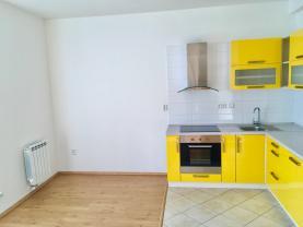 Prodej, byt 2+kk, 40 m2, Moravská Ostrava, ul. Repinova
