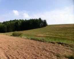 Prodej, pole, Nová Ves nad Popelkou