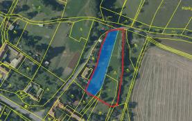 Prodej, pozemek, 3638 m2, Dzbel