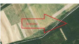 Prodej, les, 12822 m2, Račice