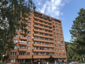 Prodej, byt 3+1, 76 m2, Ostrava - Výškovice, ul. Srbská