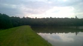 Prodej, pozemek, 10993 m2, Český Brod - Podvinný rybník