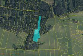 Prodej, les, 15788 m2, Bušanovice