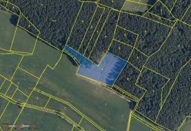 Prodej, les, 9092 m2, Bušanovice
