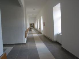 IMG_0031 (Prodej, komerční prostory, 2651 m2, Police), foto 2/10