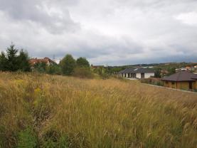 Prodej,stavební pozemek, 558 m², Tlučná