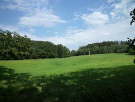 Prodej, pole, 9822 m2, Letovice, ul. Brahmsova