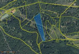 Prodej, les, 6930 m2, Vykmanov