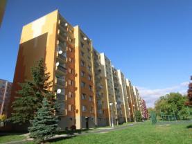 Pronájem, byt 2+1, 60 m2, DV, Jirkov, ul. Na Borku