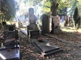 (Prodej, hrob, 3 m2, Plzeň - Svrňany, Domažlická třída), foto 2/5