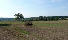 Pozemek (Prodej, pozemek, 12369 m2, Valdice - Jičín), foto 2/12