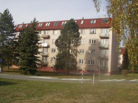 Pronájem, byt 2+1, 55 m2, OV, Dobruška