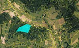 Prodej, les, 13656 m2, Huslenky