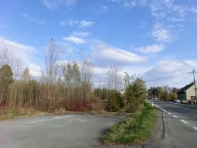 Prodej, stavební pozemek, 8600 m2, Frýdek - Místek