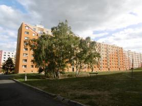 Prodej, byt 1+1, 40 m2, DV, Jirkov, ul. Na Borku