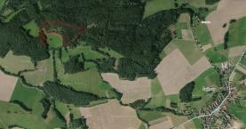 Prodej, les, 32 492 m2, Hrádek u Sušice - Zbynice