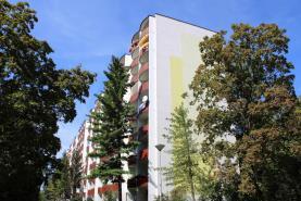 Pronájem, byt 2+1, 56 m2, Brno, ul. Šrámkova