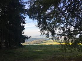 Prodej, les, 21256 m2 , Těšetiny