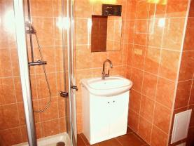 Koupelna (Prodej, rodinný dům, 3251 m2, Doubravice), foto 4/37