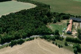 Prodej, ovocný sad, zahrada, 8000 m2, Libáň - Psinice