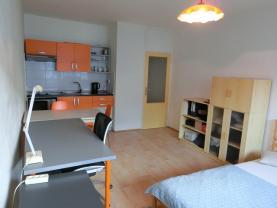 Prodej, byt 1+kk, 31 m2, Moravská Ostrava, ul. U Parku