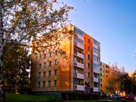 Prodej, byt 3+1, 68 m2, Havířov, ul. Ladova