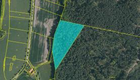 Prodej, les, 14624 m2, Stříbřec
