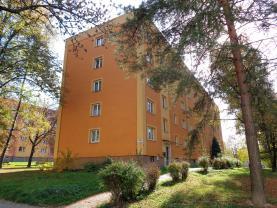 Prodej, byt 2+1, Karviná - Ráj, ul. Borovského