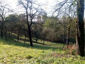 (Prodej, stavební pozemek, 1400 m2, Mštěnovice), foto 4/6
