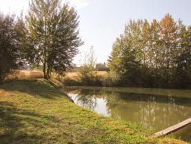 Prodej, pozemek rybník, 6874 m2, Ruda, okr. Rakovník