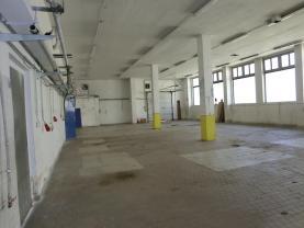 Pronájem, komerční prostory, 740 m2, Česká Třebová