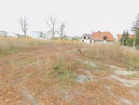 (Prodej, stavební pozemek, 3853 m2, Jeneč), foto 3/10