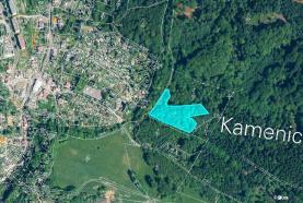 Prodej, les, 6784 m2, Kamenický Šenov