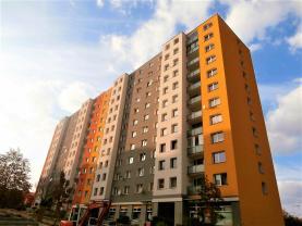 Pronájem, byt 1+kk, 33 m2, Plzeň, ul. Brněnská