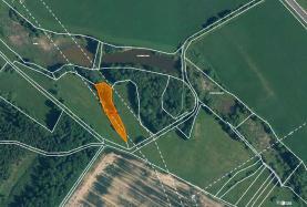 Prodej, les, 3387 m2, Horní Libchava