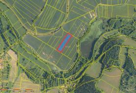 Prodej, orná půda, 6003 m2, Oselce- Kotouň