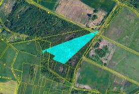 Prodej, les, 18183 m2, Veselí nad Lužnicí-Mažice