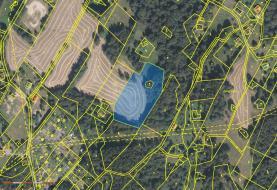 Prodej, pozemek, 7890 m2, Desná - Desná I