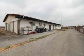 Pronájem, výrobní hala, 209 m2, Pchery - Theodor