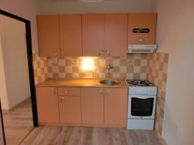 Prodej, byt 2+1, 50 m2, Frýdek - Místek, ul. Bezručova