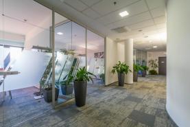 Koridor (Pronájem, kancelářský prostor, 784 m2, Praha 4 - Chodov), foto 4/9
