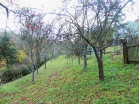 (Prodej, zahrada, 613 m2, Maleny), foto 3/8