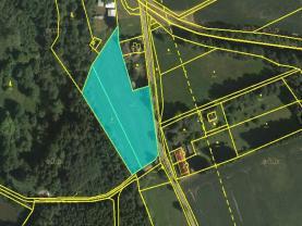 Prodej, pozemek, 7234 m2, Lomnice nad Popelkou