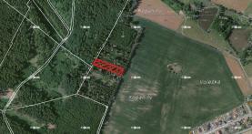 Prodej, les, 8315 m2, Budíškovice