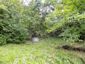 (Prodej, stavební pozemek, 1568 m2, Loučka), foto 2/5
