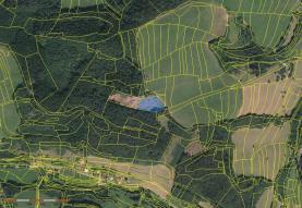Prodej, les, 4044 m2, Leskovec