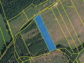 Prodej, pole, 4670 m2, Petrůvka